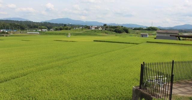 上神谷・風景2